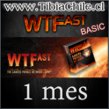 WTFast BASIC 1 mes