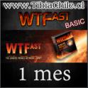 WTFast BASIC 1 mes