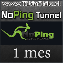 NoPing Tunnel 1 mes