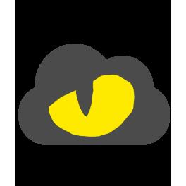 Cloudbot 10 horas