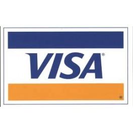 VISA Virtual de 10 Dolares